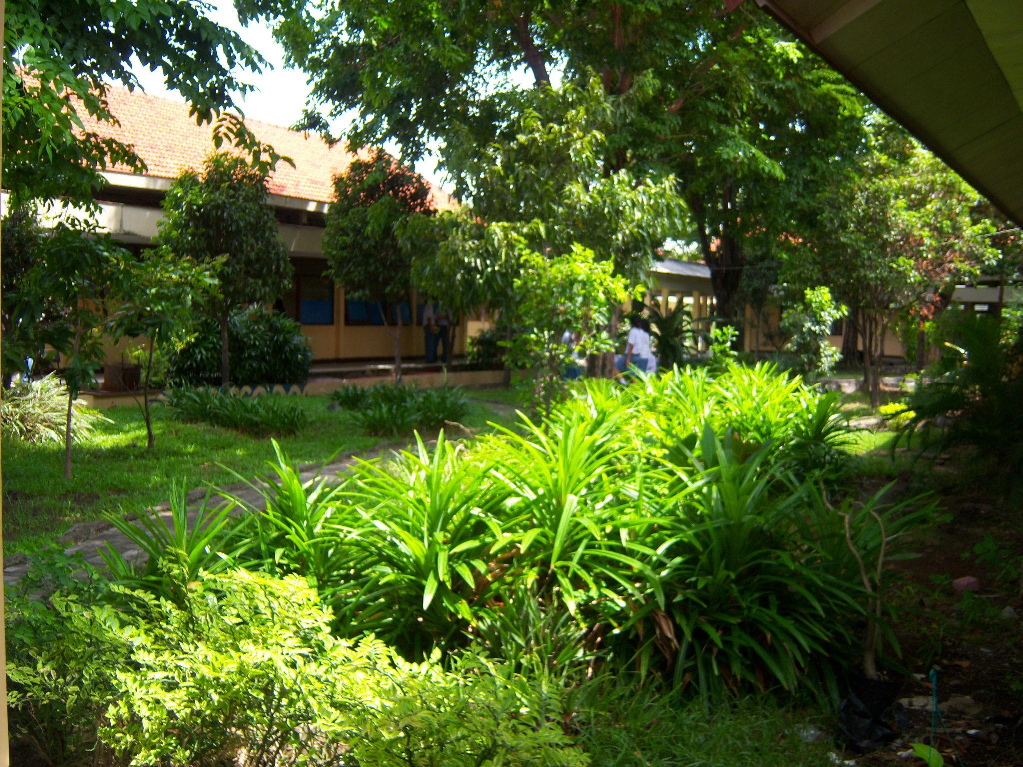 LIngkungan Bersih, Hijau , Asri dan Rindang | SMA NEGERI 16 SURABAYA